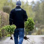 Der er påske travlhed her hos Haveforeningen Finmarken. Foto: John Randeris